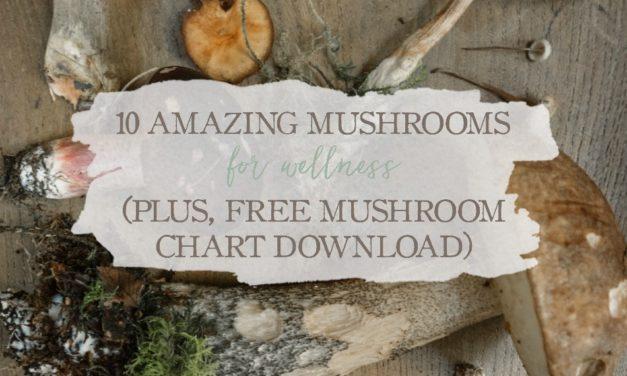 10 Amazing Mushrooms For Wellness (+ Free Mushroom Chart Download)
