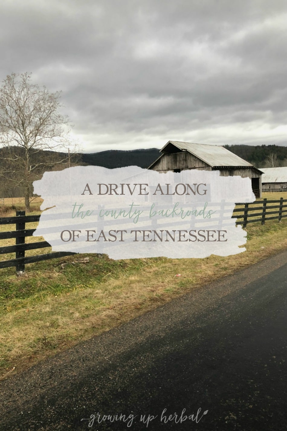 A Drive Along The County Backroads Of East Tennessee | Growing Up Herbal | Driving along the county backroads of East Tennessee is one of my favorite things to do on slow evenings.