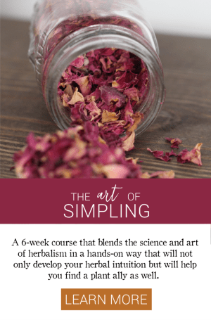 Growing Up Herbal Art of Simpling Course