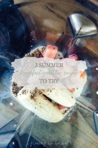 3 Summer Breakfast Smoothie Recipes To Try | Growing Up Herbal | These summer breakfast smoothie recipes are vegan, sugar-free, tasty, and super nutritious for your body! They're sure to become a new breakfast favorite!