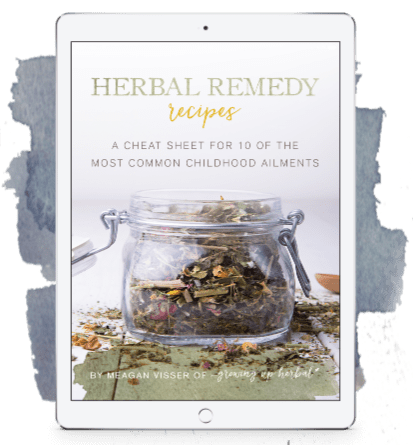 Herbal Remedy Recipes ebook