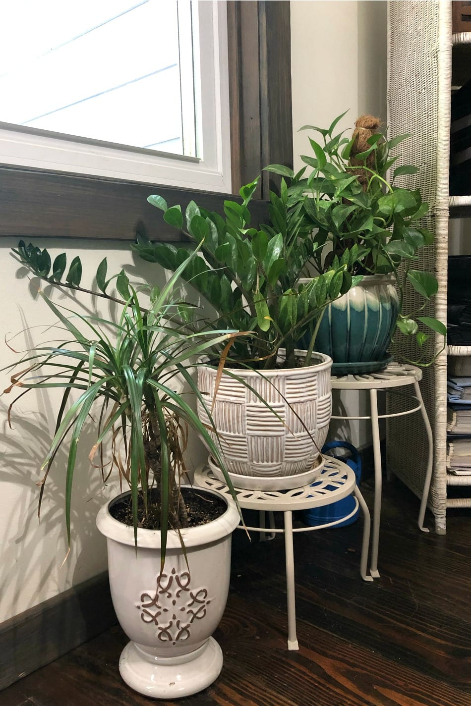 14 Air-Purifying Houseplants For Clean Air & A Beautiful Home | Growing Up Herbal | Here are 14 air-purifying houseplants that are great for indoors, easy to grow and care for (even for beginners), and make lovely additions to your home!