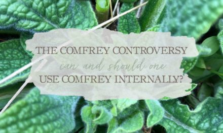 Comfrey Controversy: Can and Should One Use Comfrey Internally