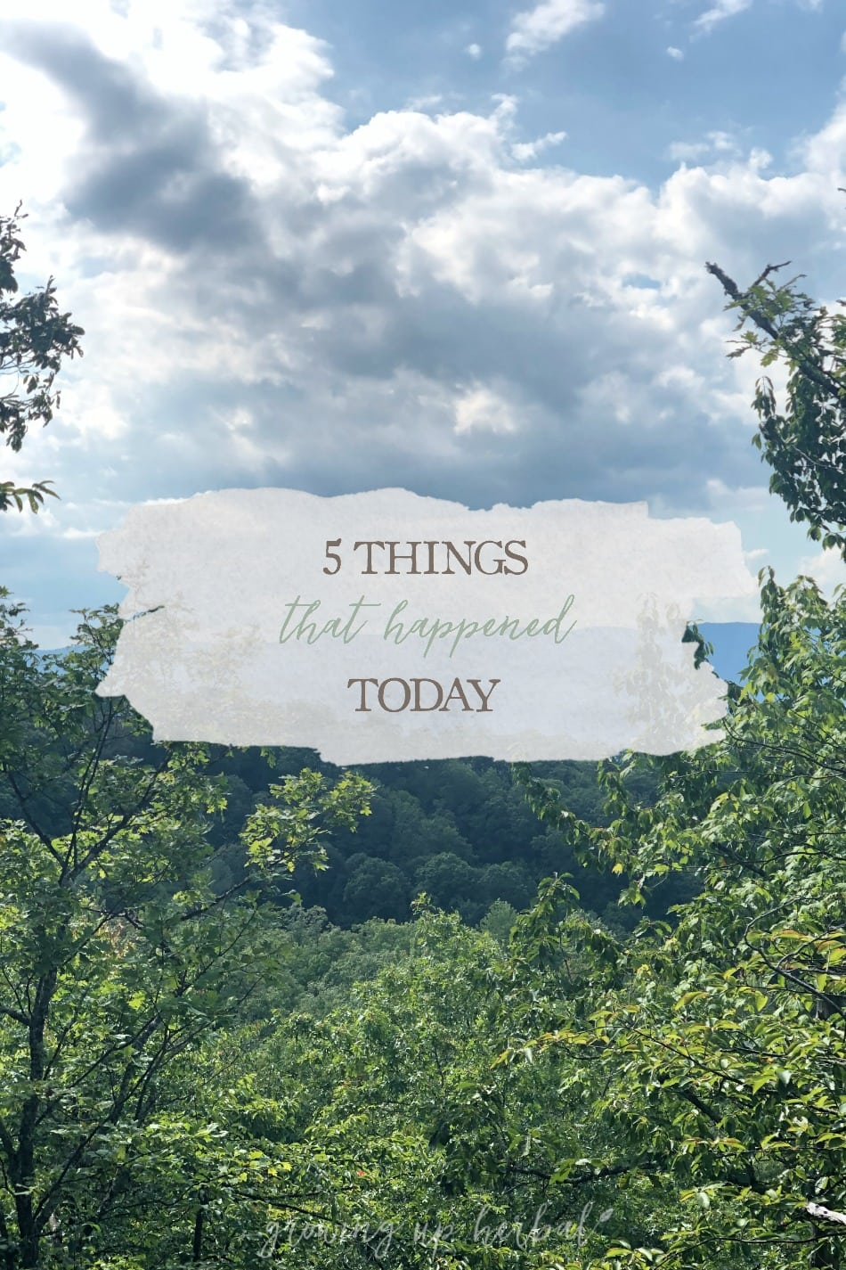5 Things That Happened Today | Growing Up Herbal | Here's a little peak at five good things from today!