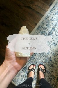 The Gems of Autumn | Growing Up Herbal | The autumn season is here, and October's seasonal living mini magazine will be landing in your inbox soon.