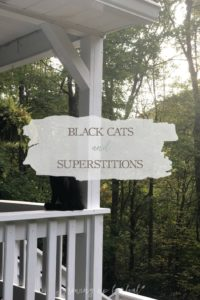 Black Cats and Superstitions | Growing Up Herbal | Meet our black cat, Oliver. According to superstition, black cats are thought to bring bad luck, but do they?