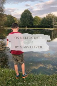 On Meditating… Sort of by Mary Oliver | Growing Up Herbal | Today I'm sharing one of my favorite Mary Oliver poems.