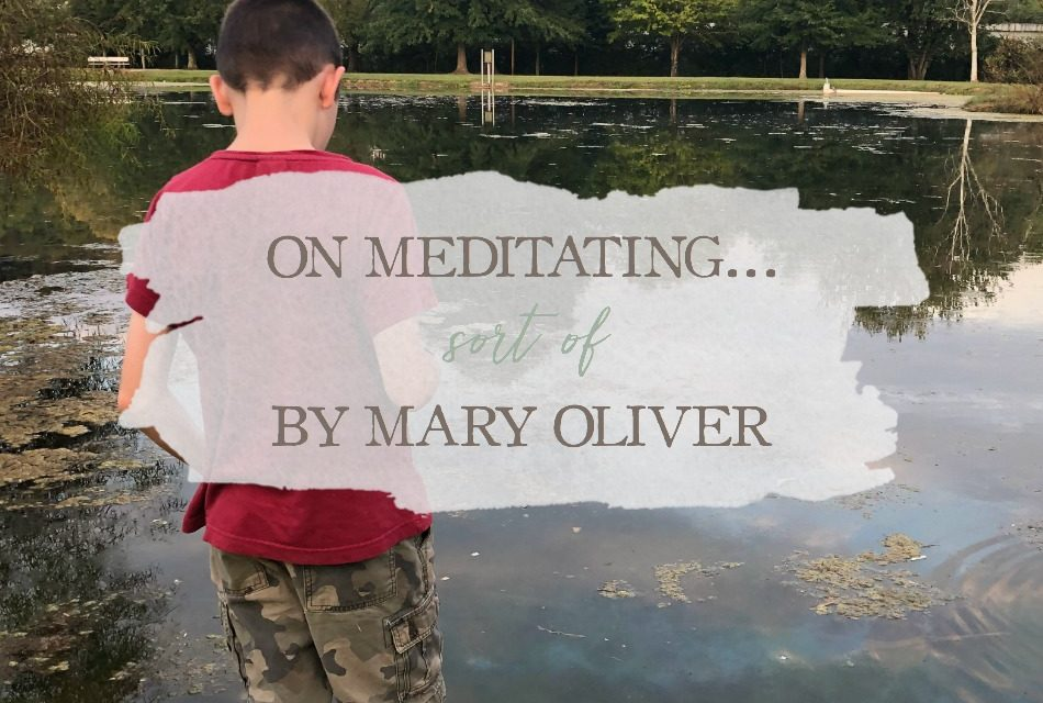 On Meditating… Sort of by Mary Oliver