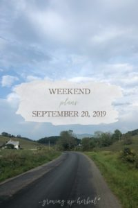Weekend Plans: September 20th, 2019   Growing Up Herbal   What plans do you have this weekend? Here's what we're up to!