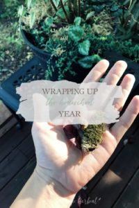 Wrapping Up The Homeschool Year | Growing Up Herbal | Between work, remodeling a house, and living out of our suitcases, we're also wrapping up the homeschool year this month!