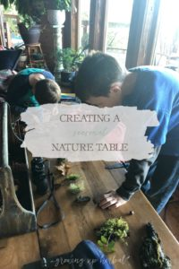 Creating A Seasonal Nature Table | Growing Up Herbal | Here's how to create a simple seasonal nature table for your homeschool science or nature study lessons.