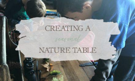 Creating A Seasonal Nature Table