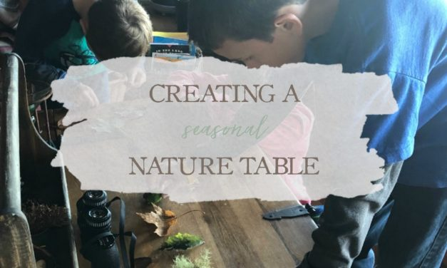 Creating A Seasonal Nature Table
