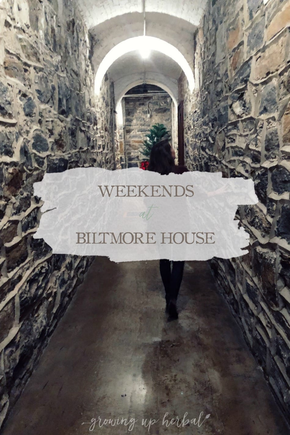 Weekends At Biltmore House | Growing Up Herbal | We're forgoing monthly date nights this year, and instead, taking quarterly weekend trips to Biltmore House in Asheville, NC—one of my favorite places!