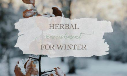 Herbal Nourishment for Winter
