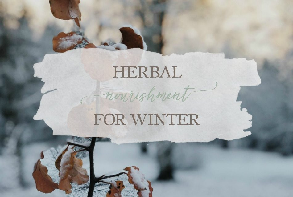 Herbal Nourishment for Winter