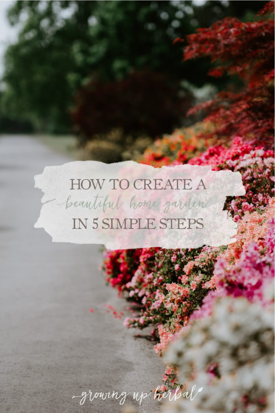 How To Create A Beautiful Home Garden In 5 Simple Steps 1