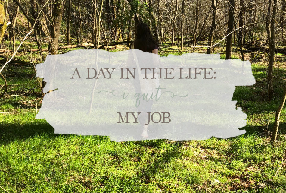 A Day In The Life: I Quit My Job