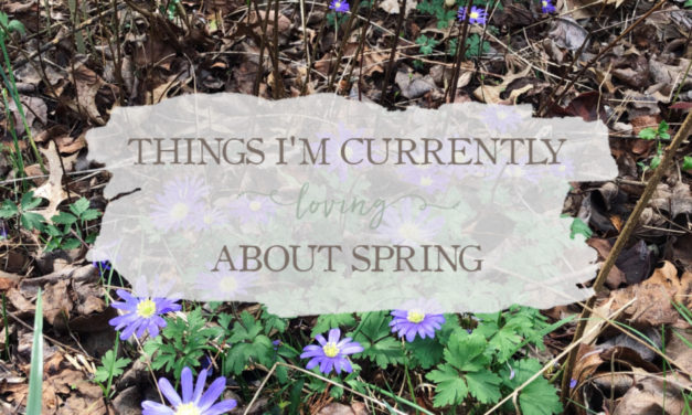 Things I'm Currently Loving About Spring