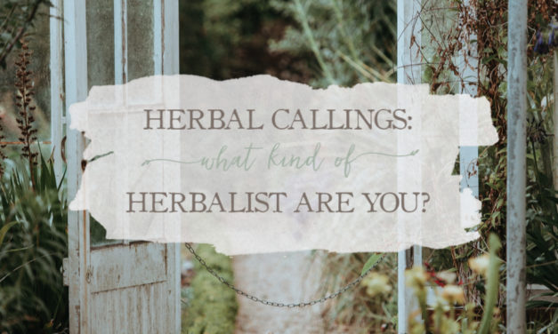 Herbal Callings: What Kind of Herbalist Are You?