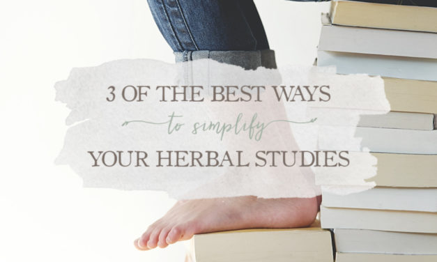 3 of the Best Ways To Simplify Your Herbal Studies