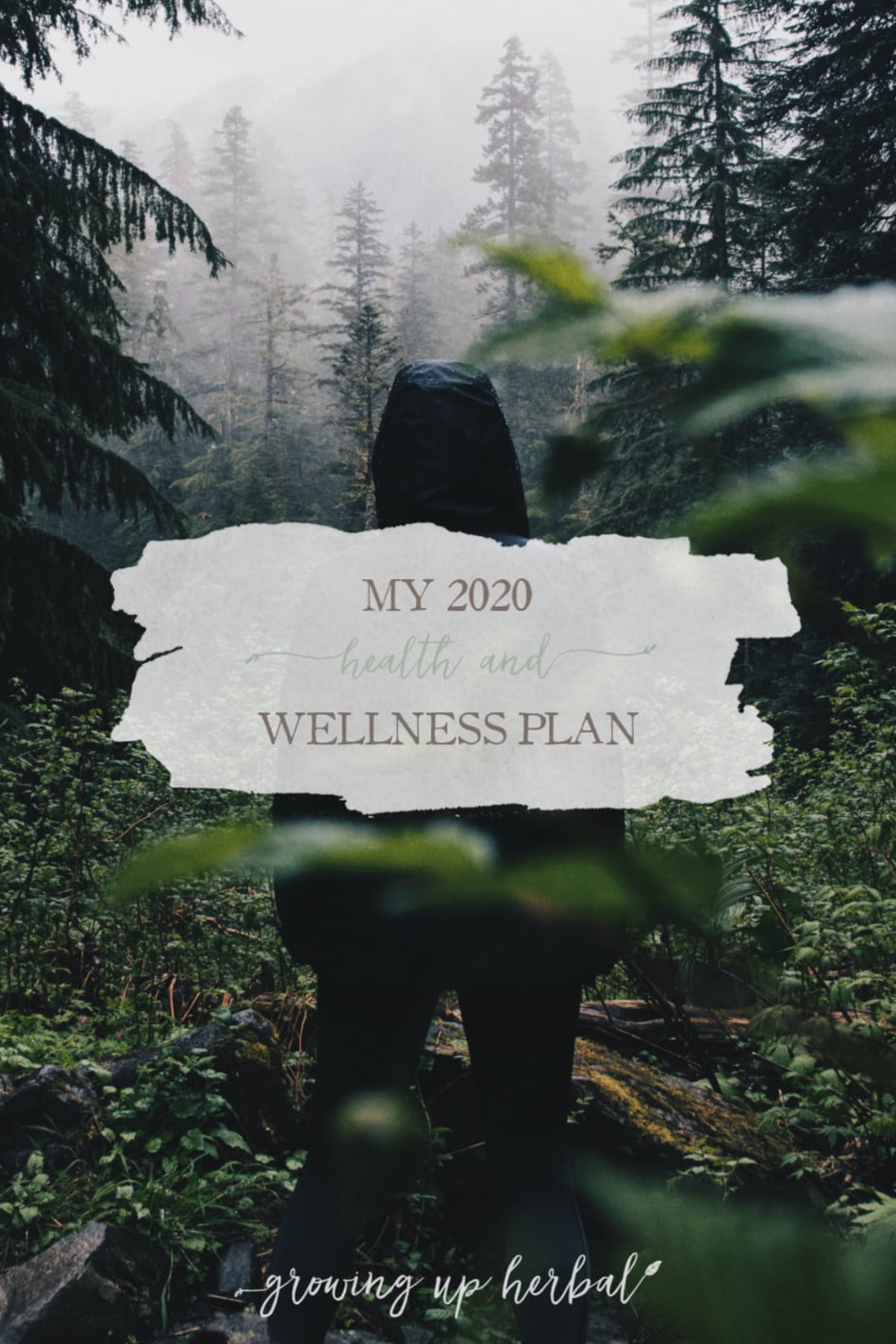 My 2020 Health and Wellness Plan 1