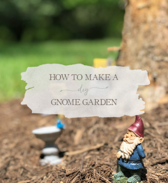 How To Make a DIY Gnome Garden
