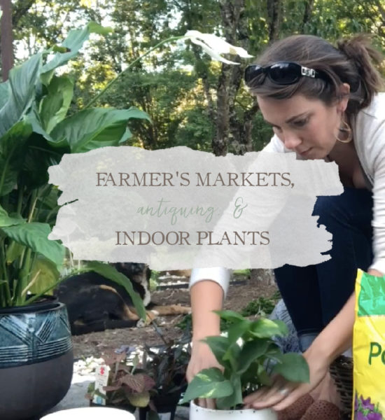 Weekly Vlog: Farmer's Markets, Antiquing, & Indoor Plants