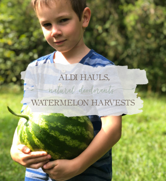 Weekly Vlog: Aldi Hauls, Natural Deodorants, & Watermelon Harvests