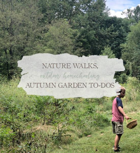 Nature Walks, Outdoor Homeschooling, Autumn Garden To-Dos, & Natural Home Decor