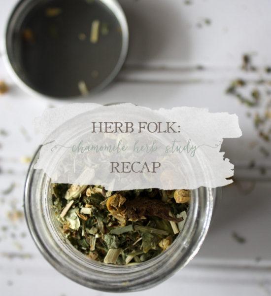 Herb Folk: Chamomile Herb Study Recap