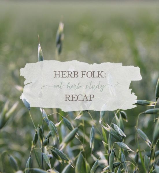 Herb Folk: Oat Herb Study Recap