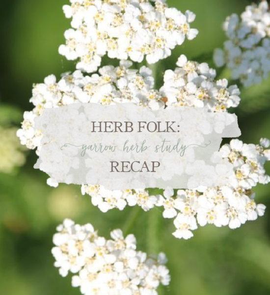 Herb Folk: Yarrow Herb Study Recap